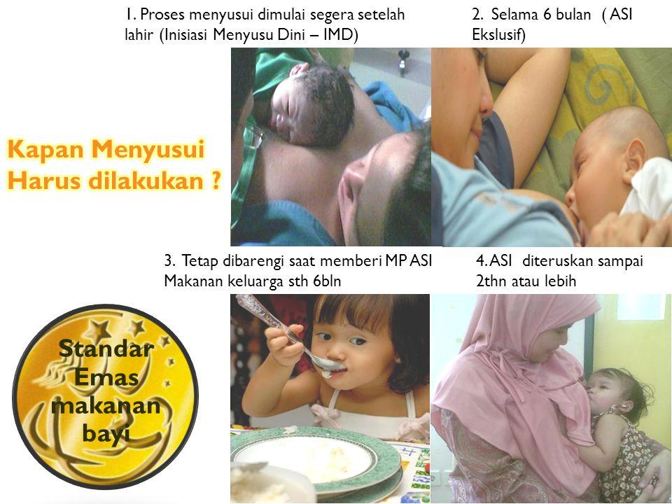 Standar Emas makanan bayi