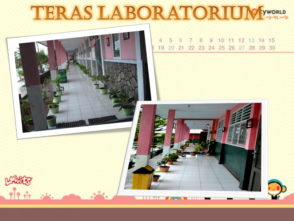 Teras Laboratorium