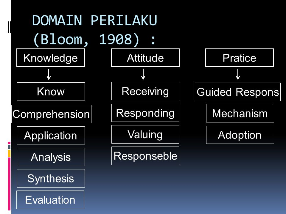 DOMAIN PERILAKU (Bloom, 1908) :