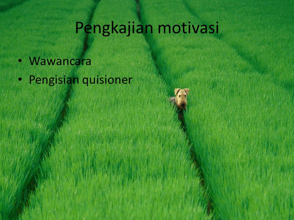 Pengkajian motivasi Wawancara Pengisian quisioner