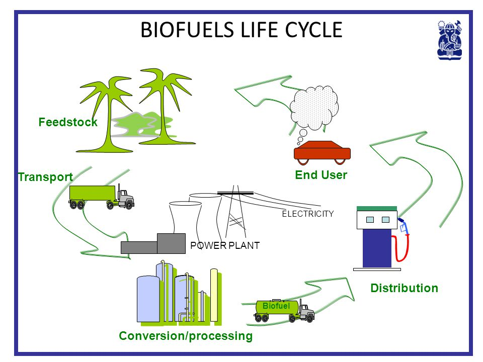 BIOFUELS LIFE CYCLE Feedstock End User Transport Distribution