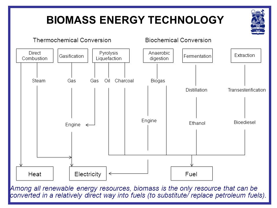 BIOMASS ENERGY TECHNOLOGY