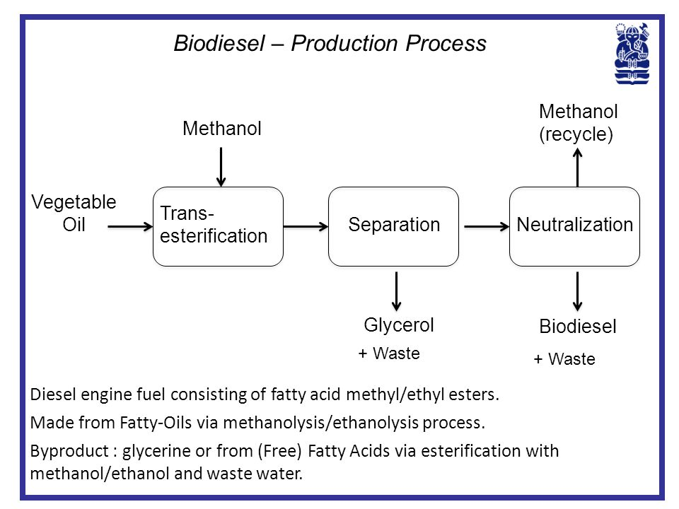 Biodiesel – Production Process