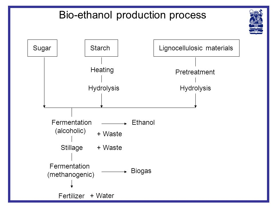 Bio-ethanol production process