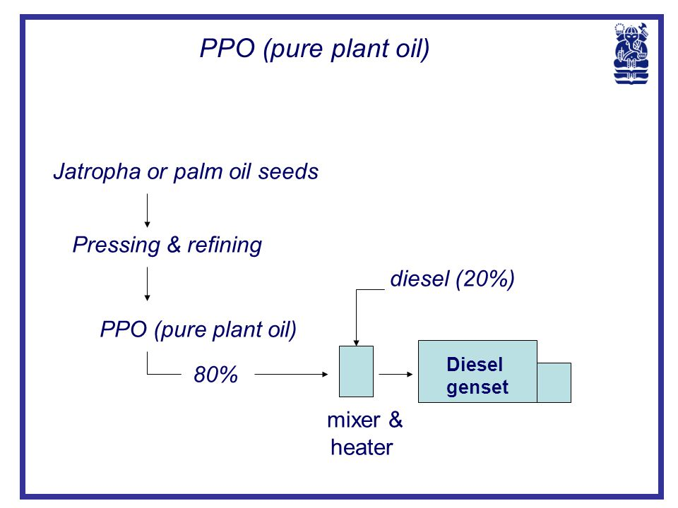 PPO (pure plant oil) Jatropha or palm oil seeds Pressing & refining