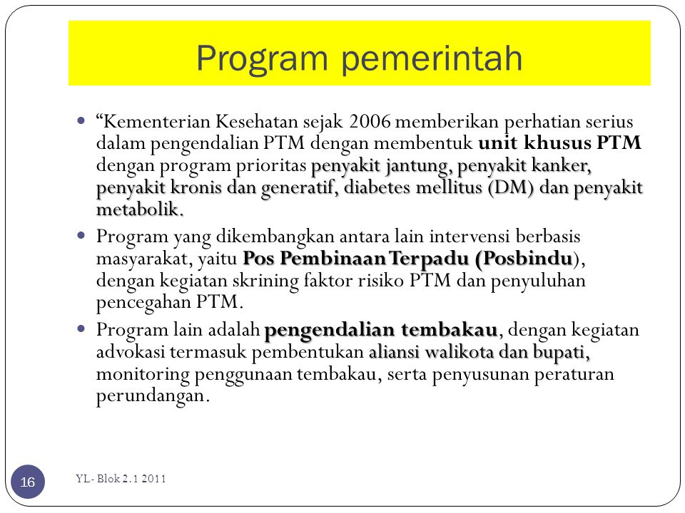 Program pemerintah