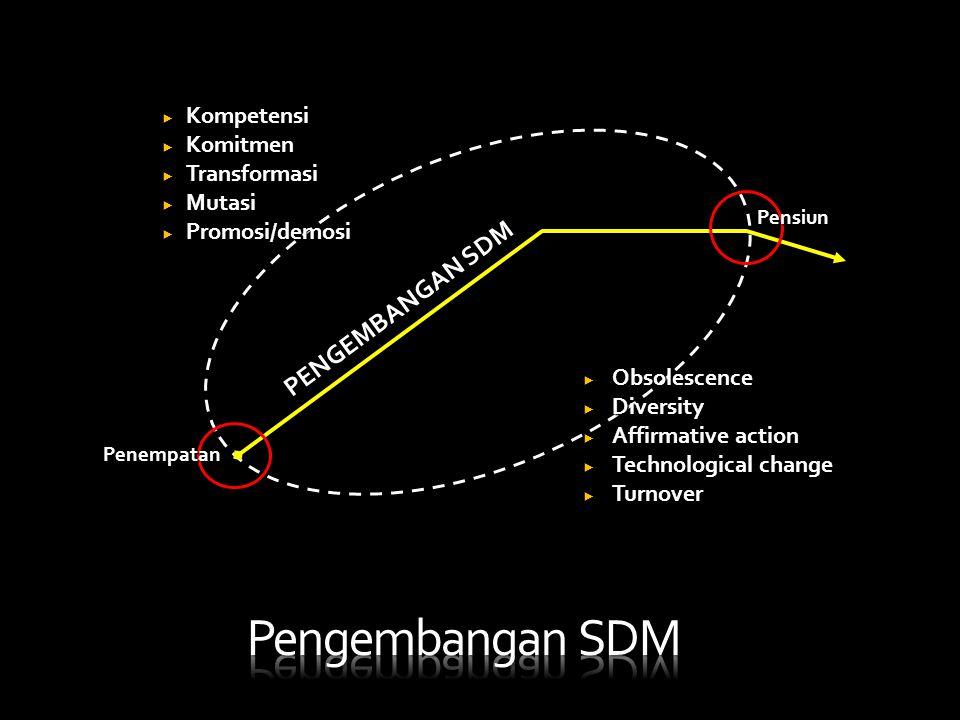 Pengembangan SDM PENGEMBANGAN SDM Kompetensi Komitmen Transformasi