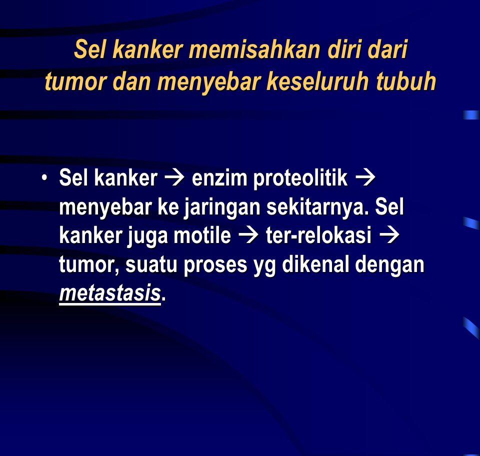 Sel kanker memisahkan diri dari tumor dan menyebar keseluruh tubuh