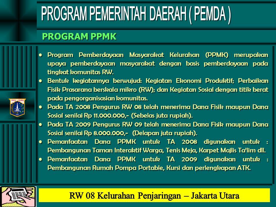 PROGRAM PEMERINTAH DAERAH ( PEMDA )