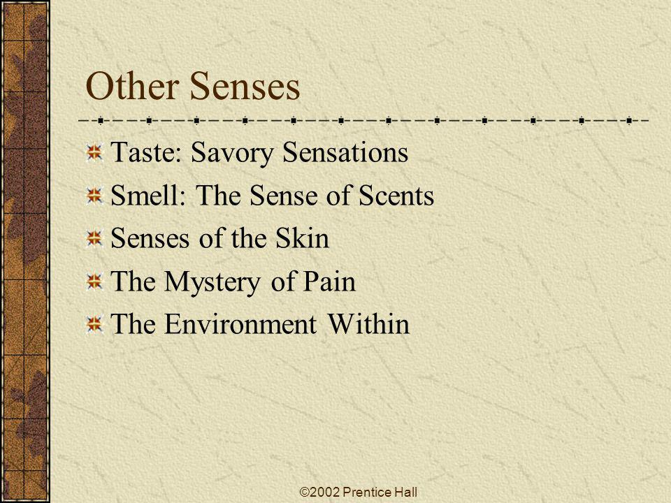 Other Senses Taste: Savory Sensations Smell: The Sense of Scents