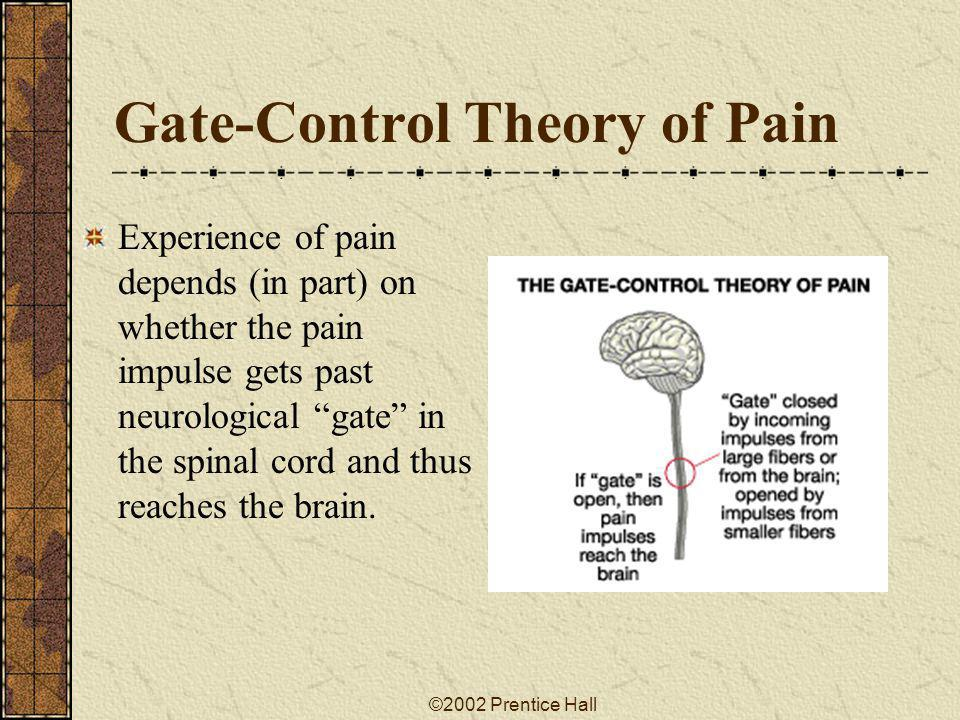 Gate-Control Theory of Pain