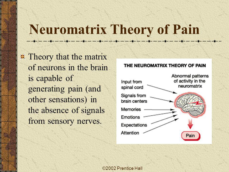 Neuromatrix Theory of Pain