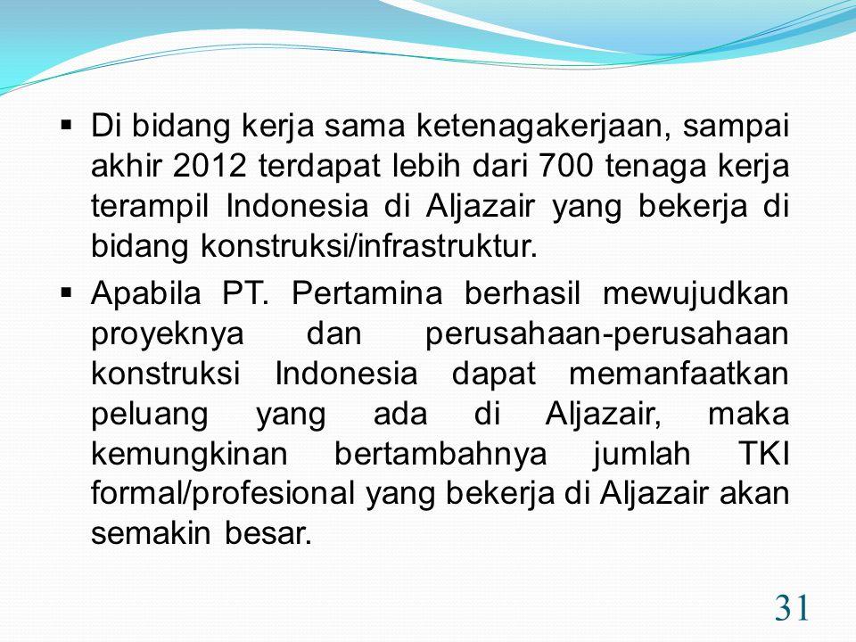 Di bidang kerja sama ketenagakerjaan, sampai akhir 2012 terdapat lebih dari 700 tenaga kerja terampil Indonesia di Aljazair yang bekerja di bidang konstruksi/infrastruktur.