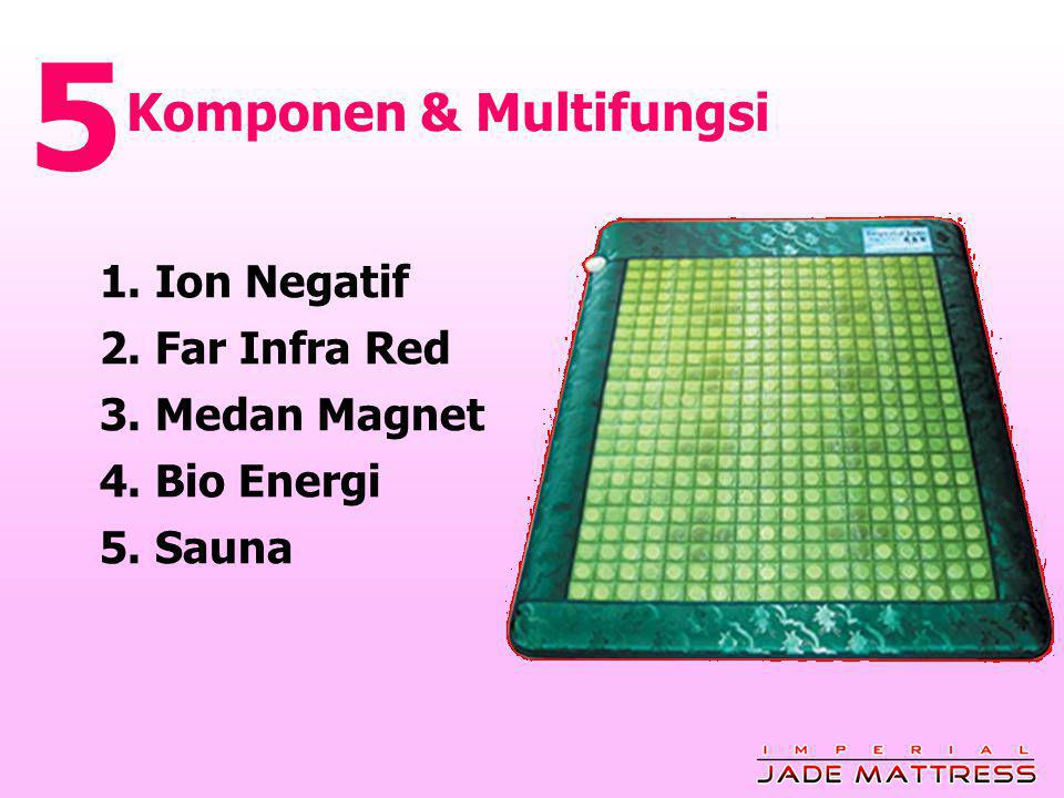 5 Komponen & Multifungsi 1. Ion Negatif 2. Far Infra Red
