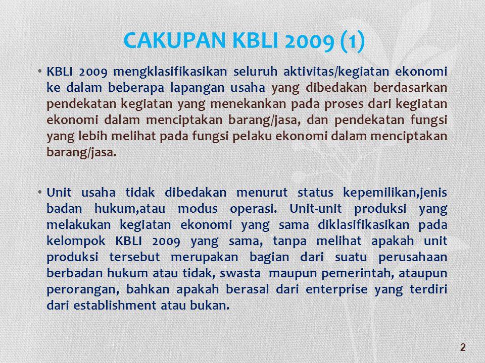 CAKUPAN KBLI 2009 (1)
