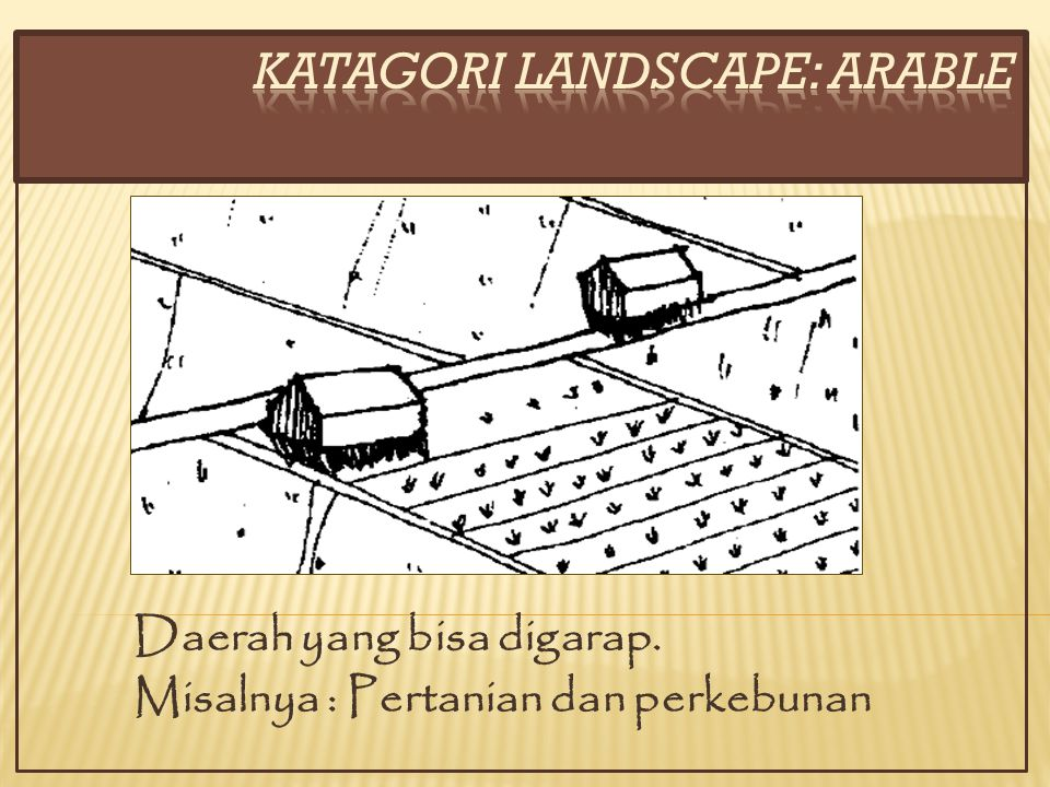 KATAGORI LANDSCAPE: ARABLE