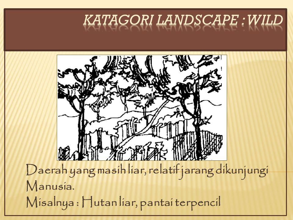 KATAGORI LANDSCAPE : WILD