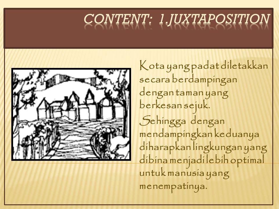 CONTENT: 1.JUXTAPOSITION