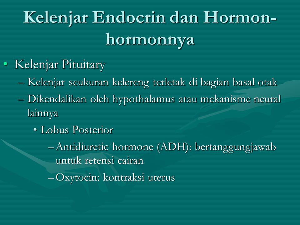 Kelenjar Endocrin dan Hormon-hormonnya