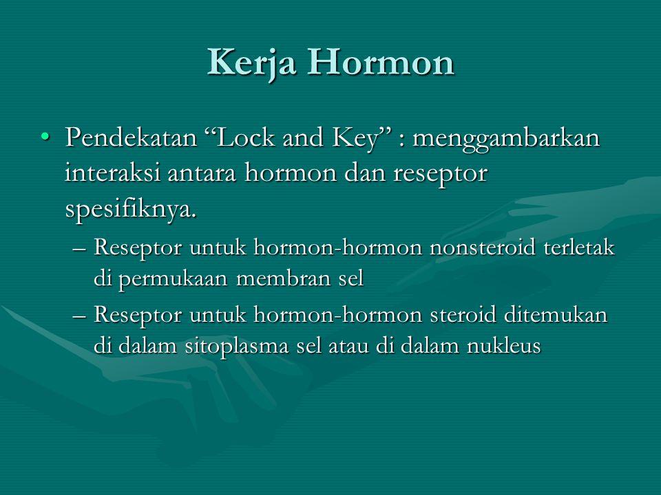 Kerja Hormon Pendekatan Lock and Key : menggambarkan interaksi antara hormon dan reseptor spesifiknya.