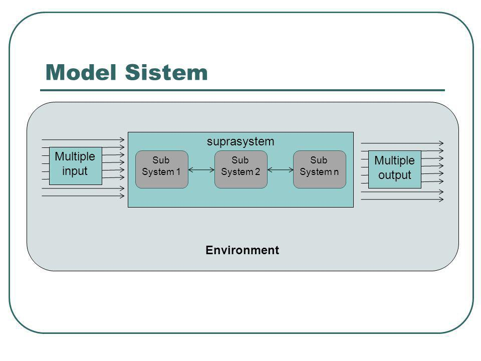 Model Sistem suprasystem Multiple Multiple input output Environment