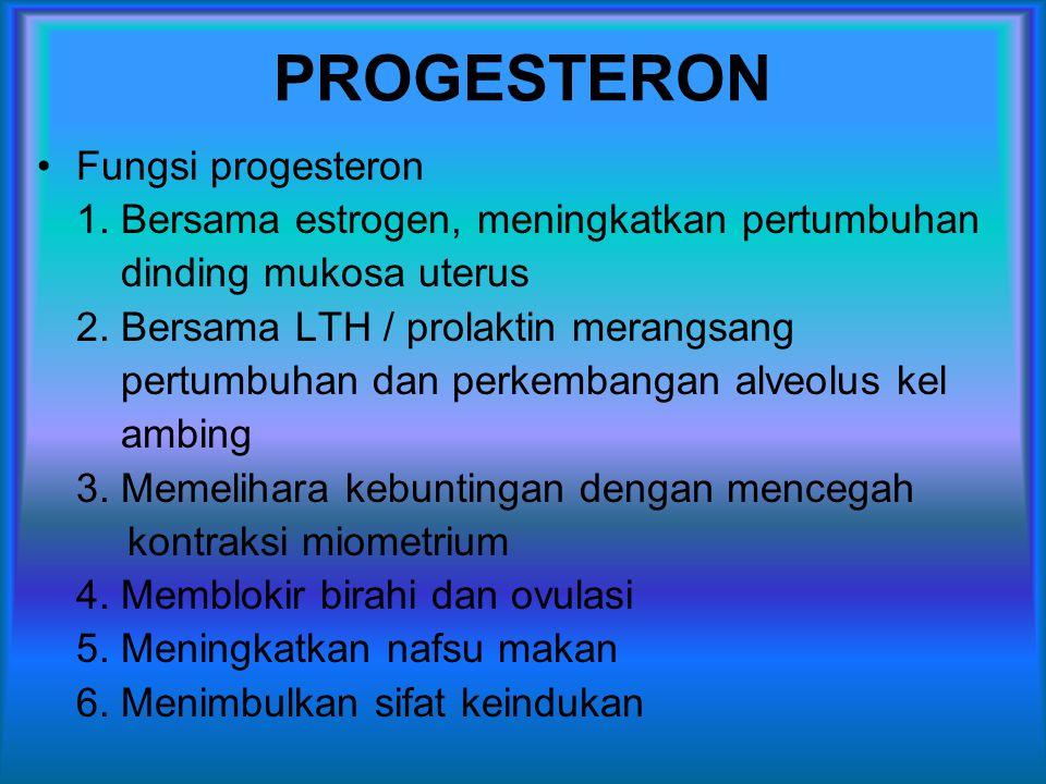 PROGESTERON Fungsi progesteron