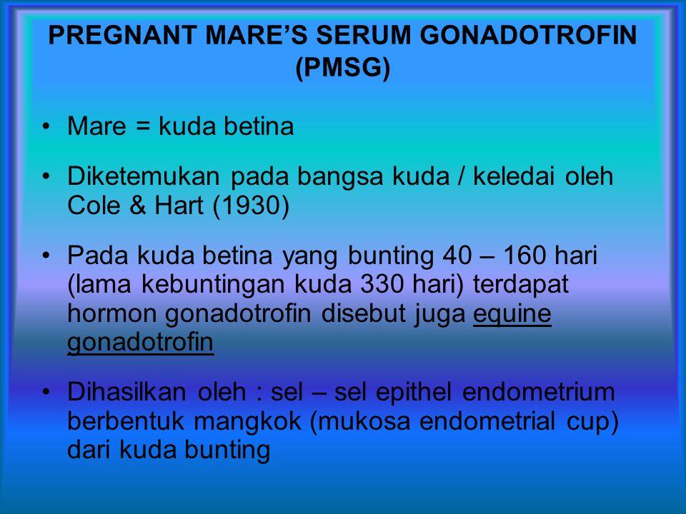 PREGNANT MARE'S SERUM GONADOTROFIN (PMSG)