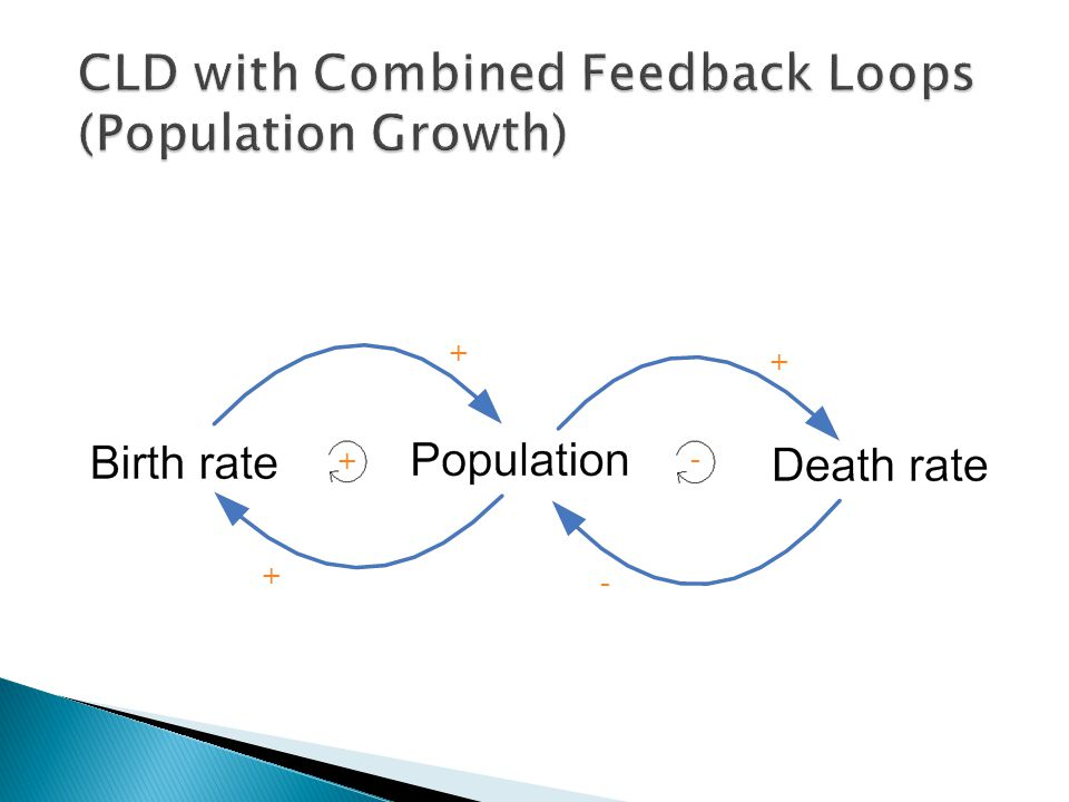 CLD with Combined Feedback Loops (Population Growth)