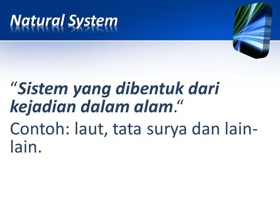 Natural System Sistem yang dibentuk dari kejadian dalam alam. Contoh: laut, tata surya dan lain-lain.