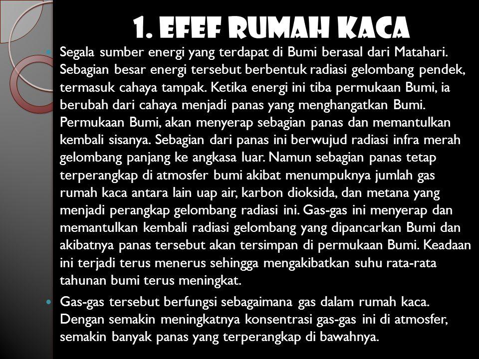 1. EFEF RUMAH KACA