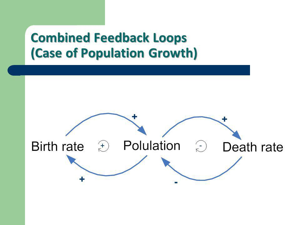 Combined Feedback Loops (Case of Population Growth)