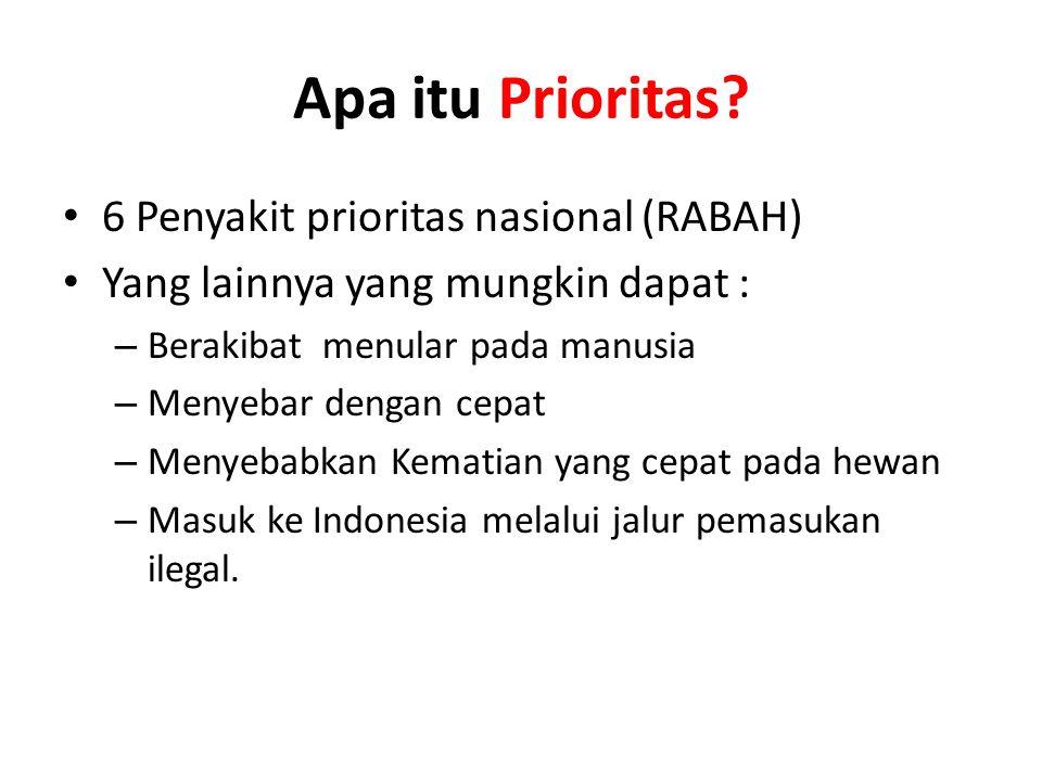 Apa itu Prioritas 6 Penyakit prioritas nasional (RABAH)