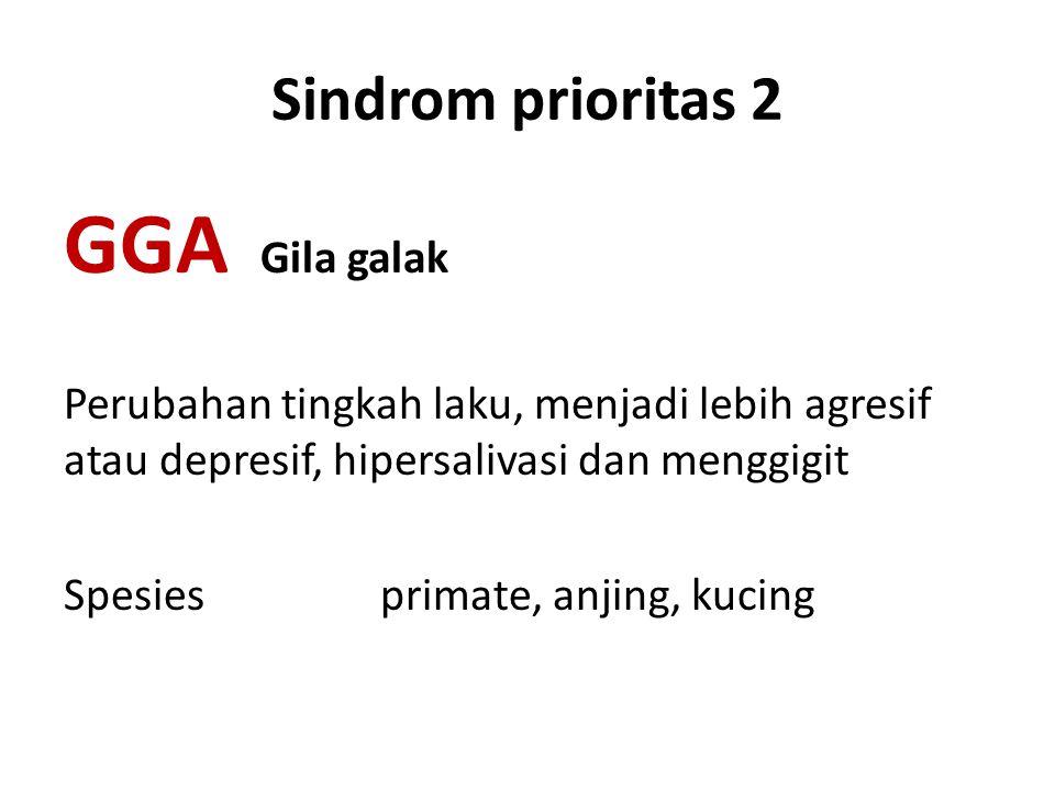 GGA Gila galak Sindrom prioritas 2
