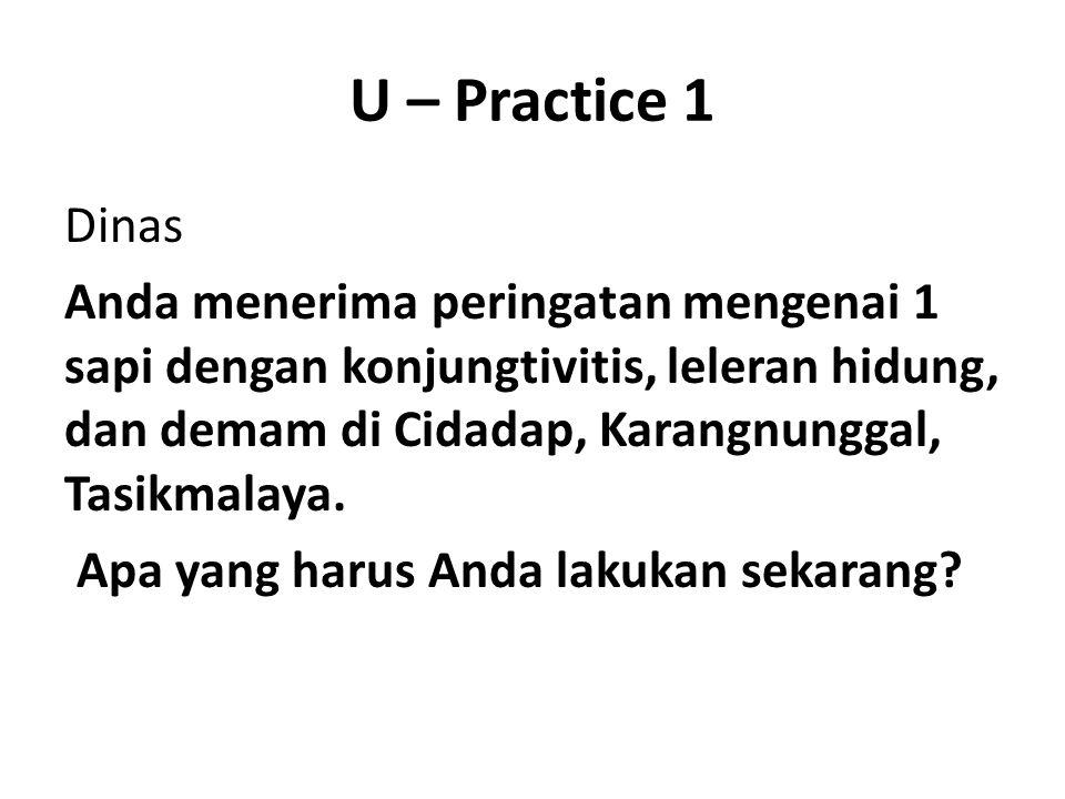 U – Practice 1