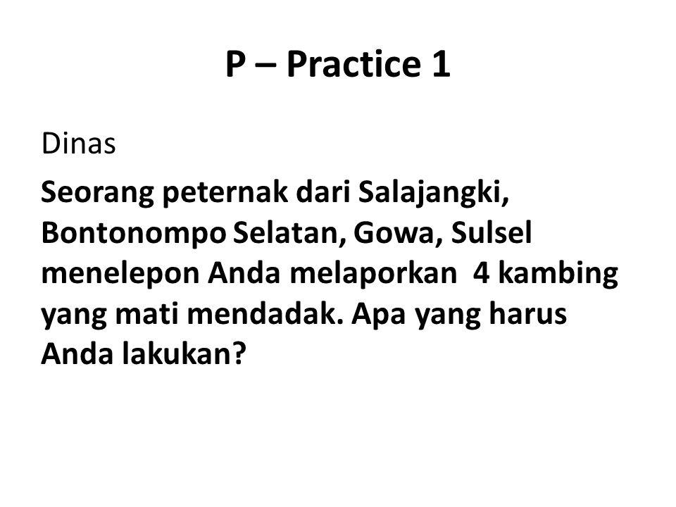 P – Practice 1