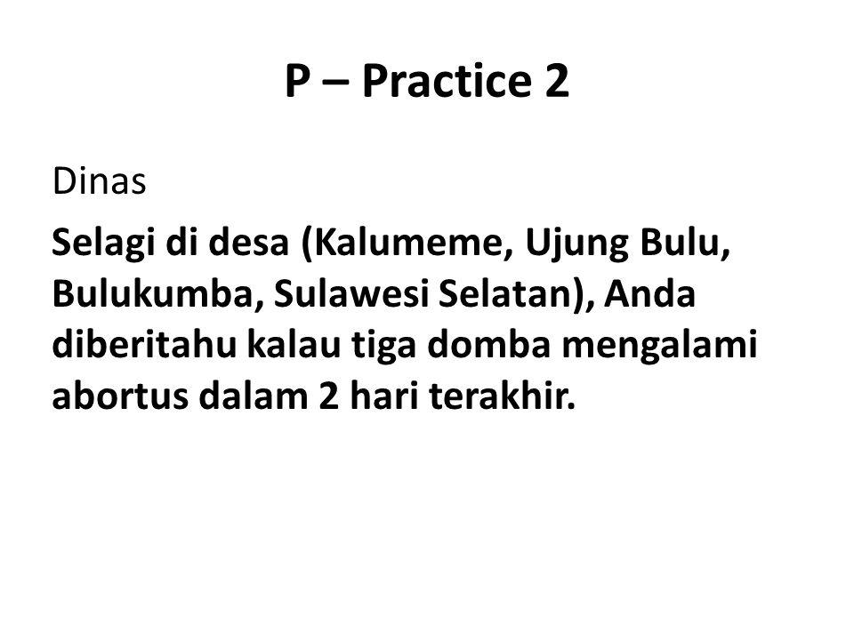 P – Practice 2