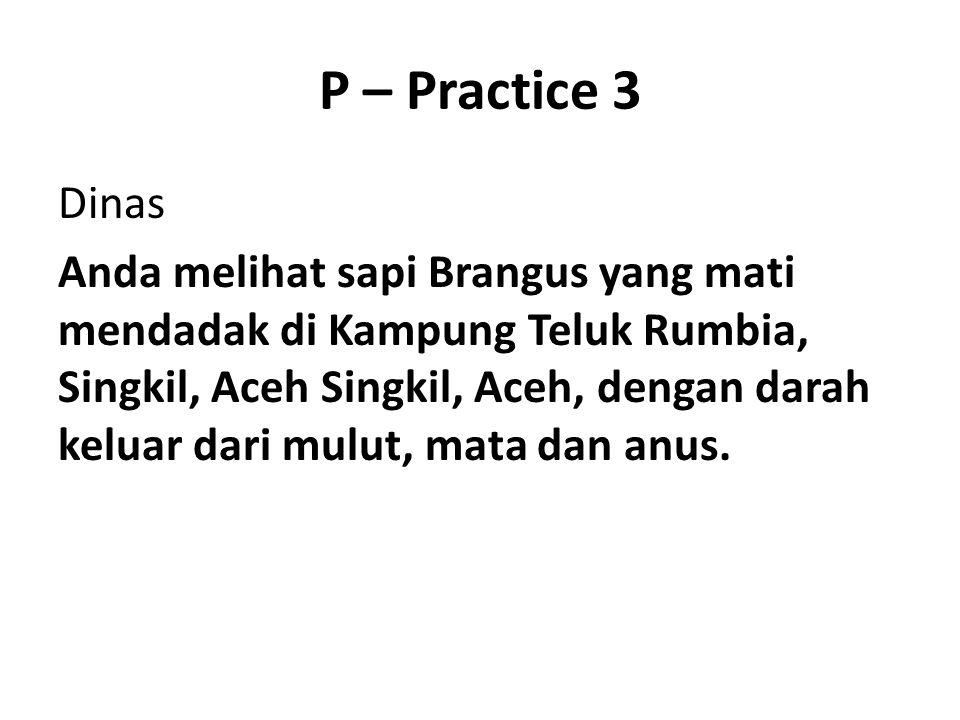 P – Practice 3