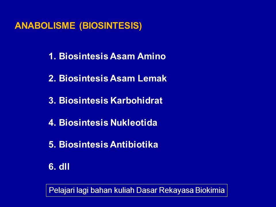 ANABOLISME (BIOSINTESIS)