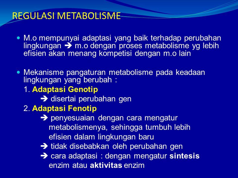 REGULASI METABOLISME