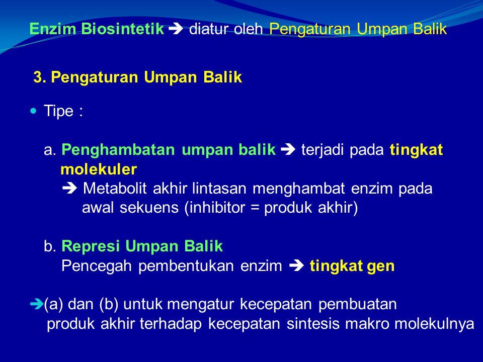 Enzim Biosintetik  diatur oleh Pengaturan Umpan Balik