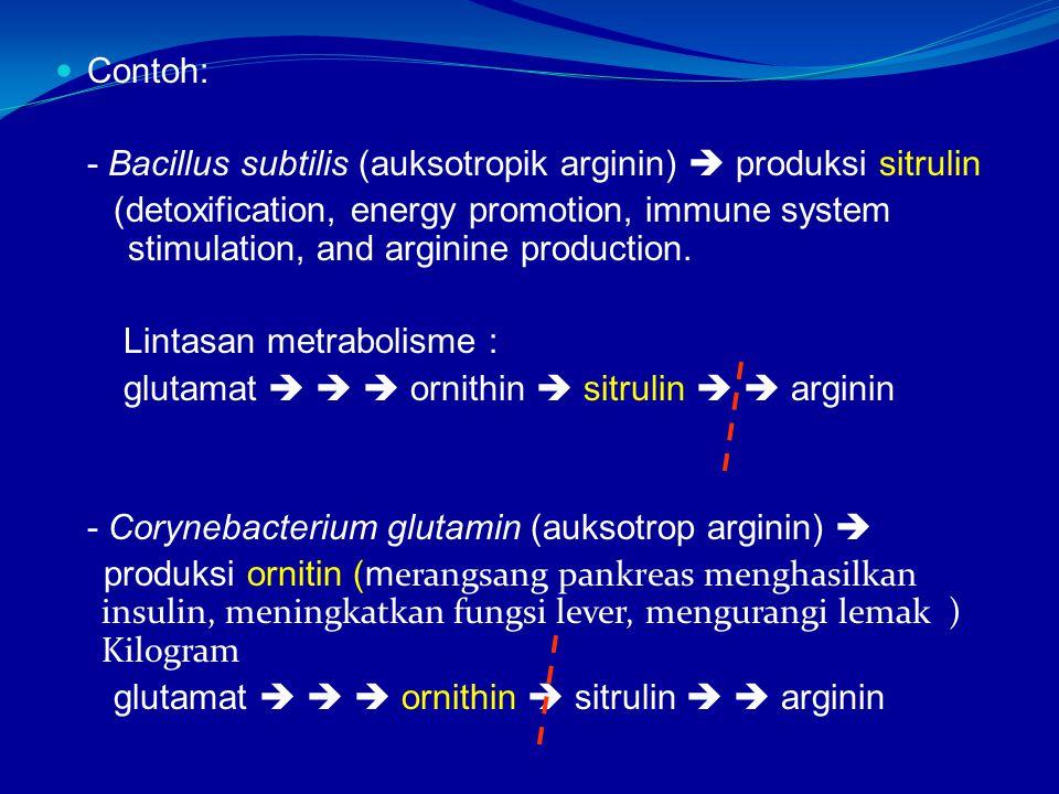 Contoh: - Bacillus subtilis (auksotropik arginin)  produksi sitrulin.
