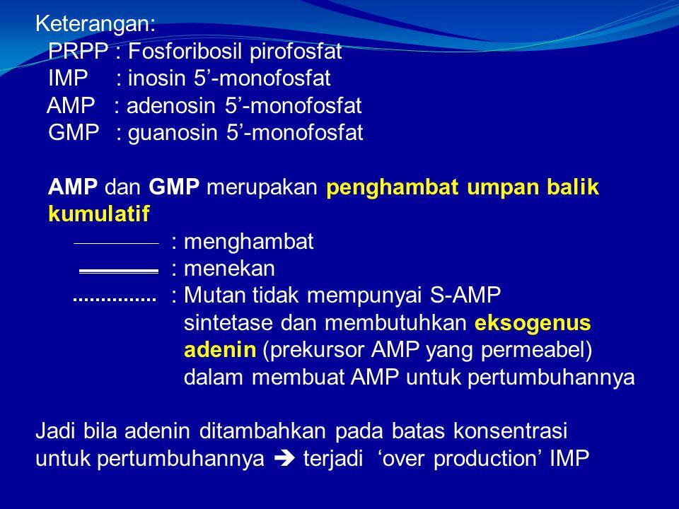 Keterangan: PRPP : Fosforibosil pirofosfat. IMP : inosin 5'-monofosfat. AMP : adenosin 5'-monofosfat.