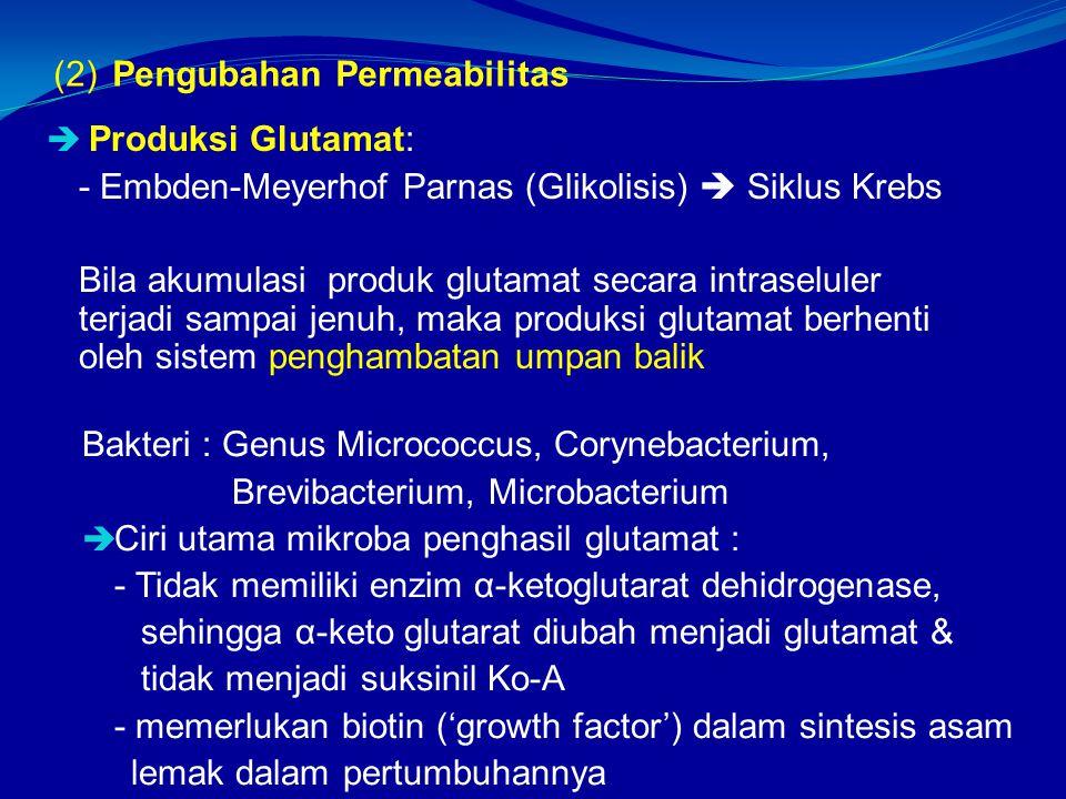 (2) Pengubahan Permeabilitas