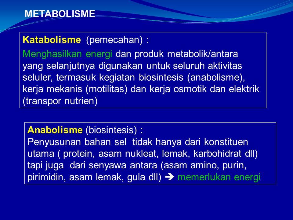 METABOLISME Katabolisme (pemecahan) :