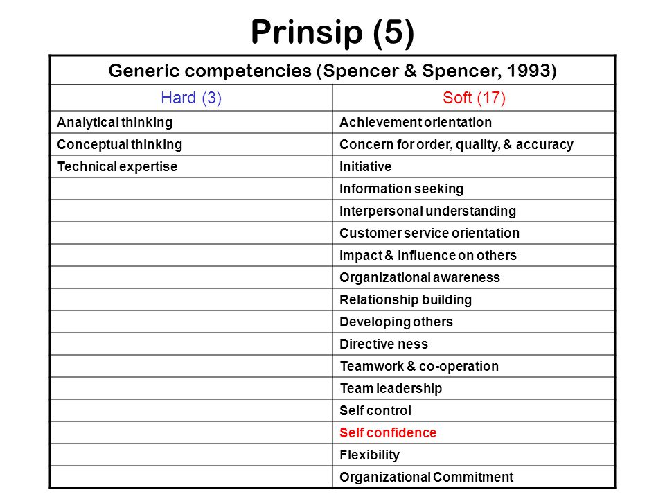 Generic competencies (Spencer & Spencer, 1993)