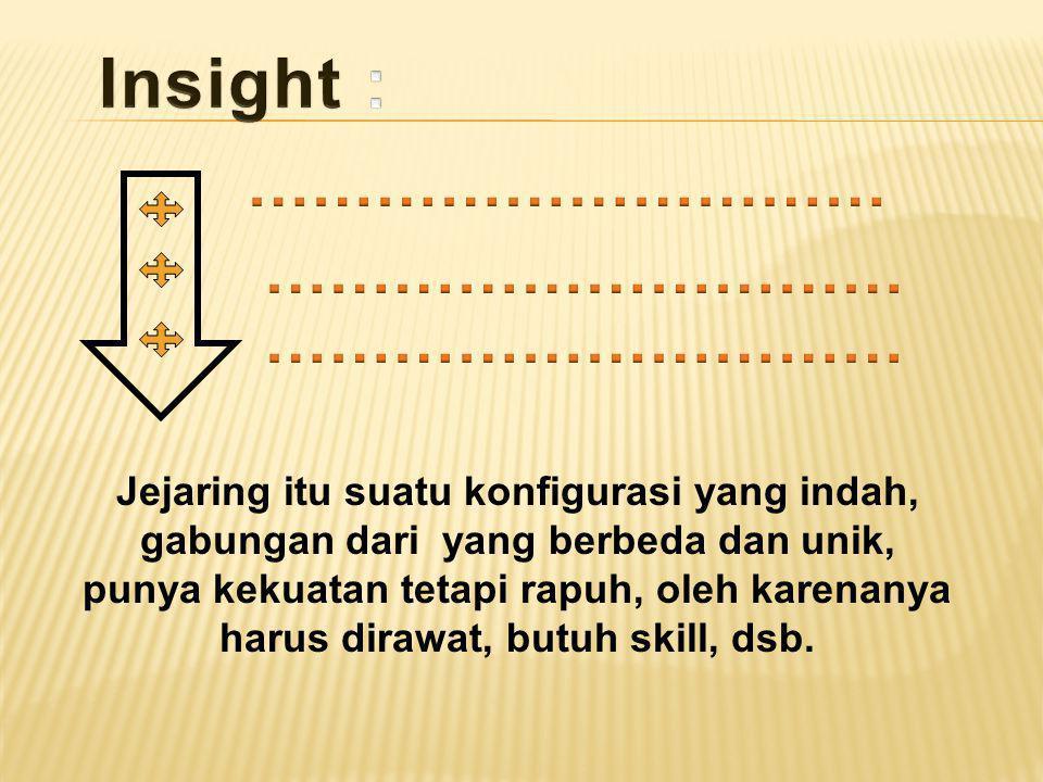 Insight : ………………………… ………………………… …………………………