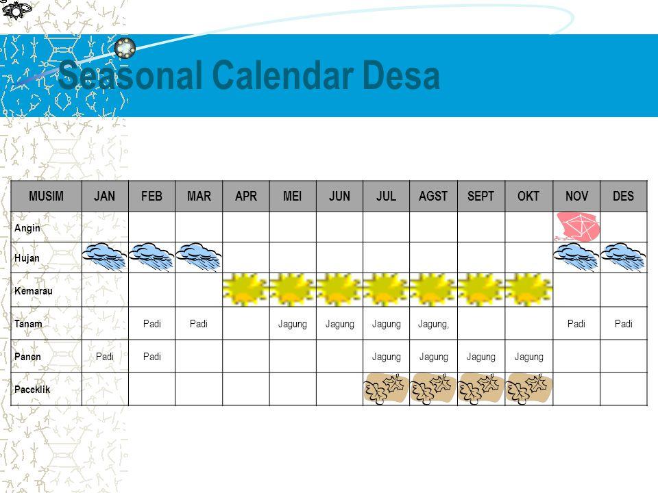 Seasonal Calendar Desa