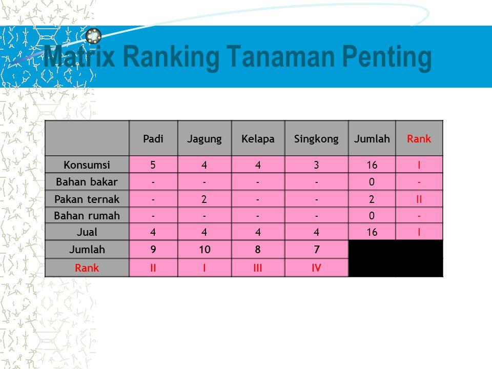 Matrix Ranking Tanaman Penting