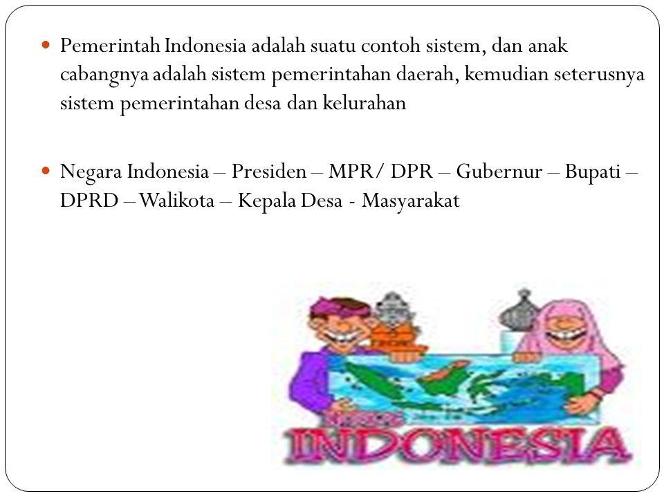 Pemerintah Indonesia adalah suatu contoh sistem, dan anak cabangnya adalah sistem pemerintahan daerah, kemudian seterusnya sistem pemerintahan desa dan kelurahan