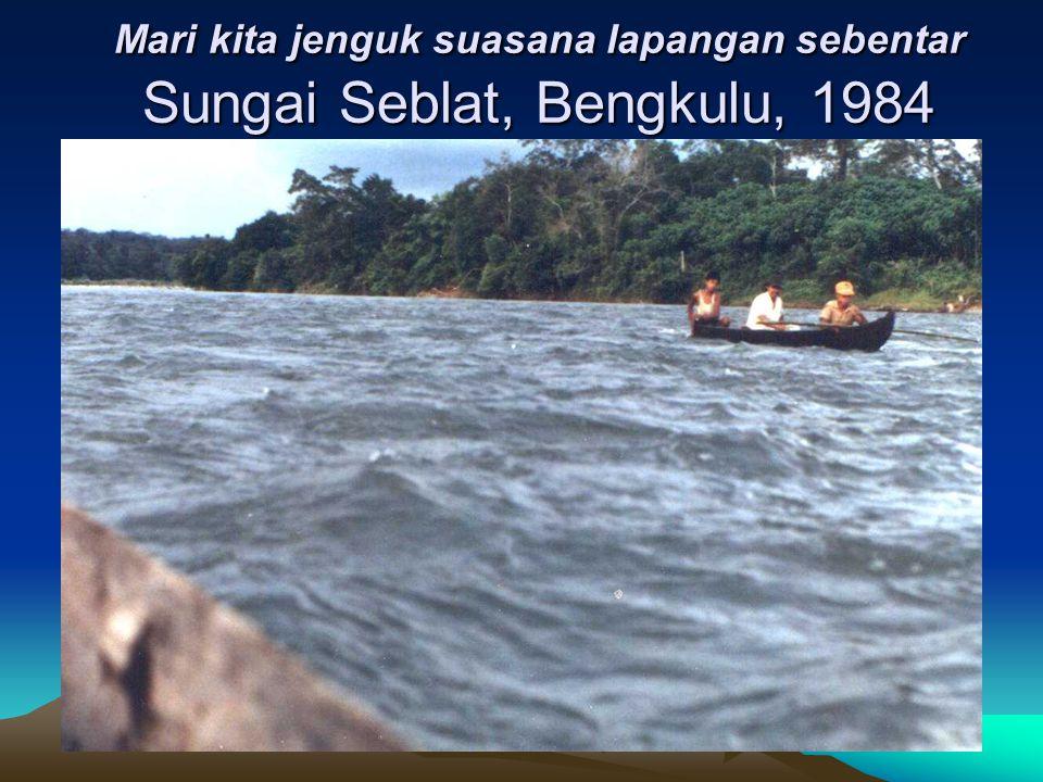 Mari kita jenguk suasana lapangan sebentar Sungai Seblat, Bengkulu, 1984